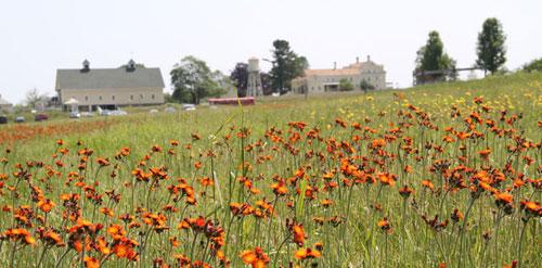 wells-laudholm-farm